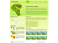 Art & Photography template